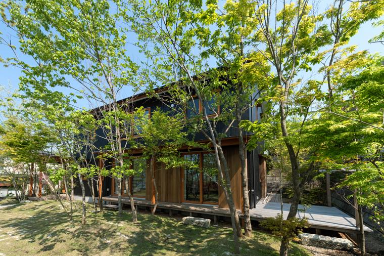 冬は落葉樹の葉が落ちて、陽射しが室内にたっぷりと届き、暖かい陽だまりをつくります