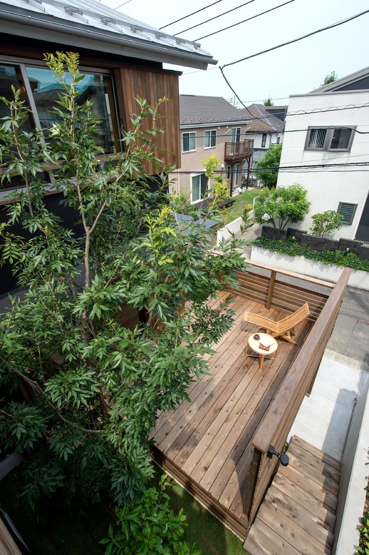 木漏れ日のある庭